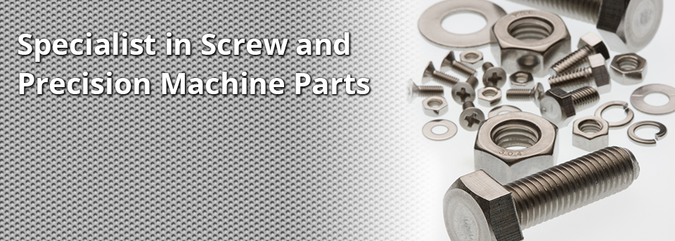 Specialist in Screw and Precision Machine Parts